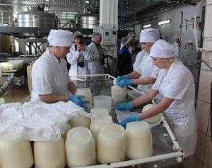 Столица молока Барнаул